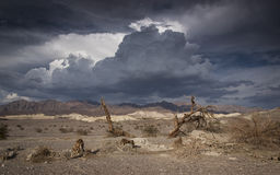 No life. In the desert of Death Valley Stock Image