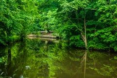 No mógł być zielony Zadziwiający park i pokój w nim obraz royalty free