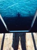 No mar Imagens de Stock