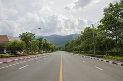 No meio da estrada Imagens de Stock