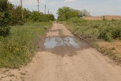 No meio da estrada de terra h? uma po?a ap?s a chuva, grama verde cresce grossamente nos lados da estrada fotos de stock