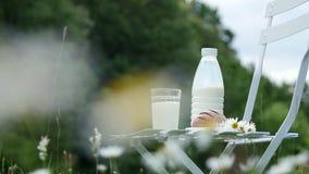 No meio de um gramado da camomila, em uma cadeira branca é uma garrafa do leite, igualmente há um vidro do leite, e do pão necess vídeos de arquivo
