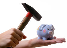 No Money???. A young woman is breaking her piggybank with a hammer. Isolated over white with a lot of space for text Royalty Free Stock Images