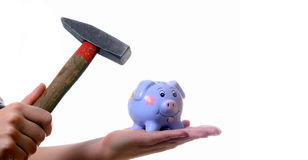 No Money No Problem. A young woman is breaking her piggybank with a hammer. Isolated over white with a lot of space for text Stock Photography