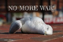 No more WAR. We Are All from the same parents Royalty Free Stock Images