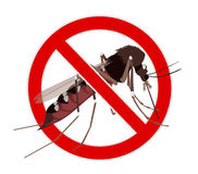 No Mosquito sign. Mosquito crossed by red line, stop mosquito Royalty Free Stock Photo