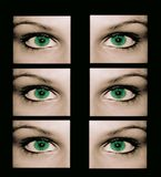 No-one is safe from strange eyes. No-one is safe from strange green eyes Stock Illustration