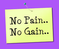 No Pain Gain Represents Making It Happen And Success Stock Photos