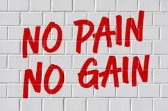 No pain no gain. Graffiti on a brick wall - No pain no gain royalty free stock photo