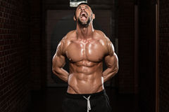 No Pain No Gain. Portrait Of A Physically Fit Man Showing His Well Trained Body stock images