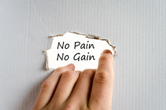 No pain no gain text concept. Isolated over white background royalty free stock photography