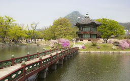 No palácio de Gyeongbok, Seoul imagem de stock