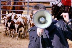 NO. para a crueldade do rodeio Fotografia de Stock