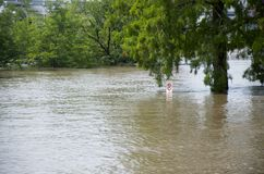 Flooding. A no parking sign in water during a major flood Royalty Free Stock Photography
