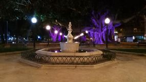 No parque Foto de Stock
