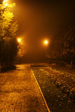 No parque da noite Foto de Stock