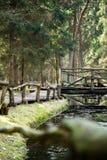 No parque regional de Neris imagens de stock royalty free