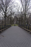 No People on The Mall in Central Park New York City in Winter Stock Images