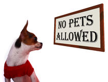 No Pets Allowed Sign Royalty Free Stock Photos