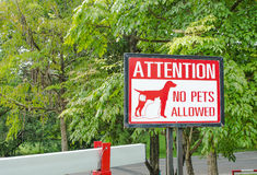 No pets allowed sign on gate in the park Stock Images
