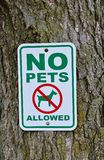 No pets allowed sign on tree. Royalty Free Stock Photos