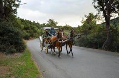 No Phaeton de Buyukada da queda Transporte do cavalo fotografia de stock