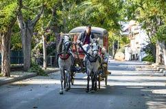 No Phaeton de Buyukada da queda Transporte do cavalo foto de stock