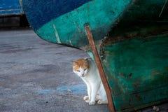 No porto de Essaouira fotos de stock royalty free