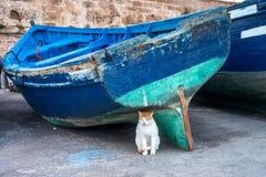No porto de Essaouira foto de stock