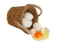 Não põr todos os ovos à mesma cesta Fotos de Stock Royalty Free