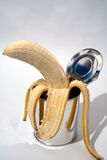 No preservatives used !!. Banana and tin royalty free stock photos