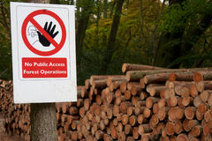 No public access forestry sign. Sign prohibiting public access to a forestry area, with log stack background Royalty Free Stock Images