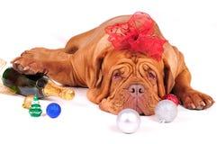 No puede esperar la Navidad Imagen de archivo