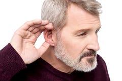 ¿No puede oírle, qué le hizo dijeron? Fotografía de archivo libre de regalías
