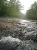 No rio Fotos de Stock