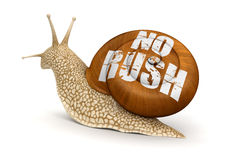 No rush Snail (clipping path included) Stock Photos