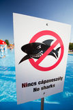 No sharks Royalty Free Stock Images