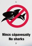 No sharks Royalty Free Stock Photos