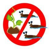 No slugs symbol isolated on white background vector illustration
