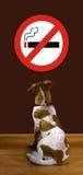No Smoking. Puppy reads stock image
