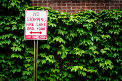 No Stopping sign in Fells Point, Baltimore, Maryland. Stock Photos