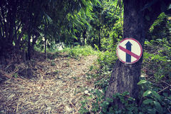 No straight sign on the tree Royalty Free Stock Images
