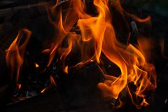 No sumário do fogo foto de stock royalty free