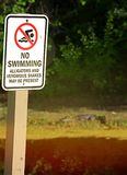 No Swimming Sign By Pond stock image