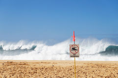 NO swimming. Warning at the beach in Hawaii for dangerous conditions Stock Images