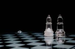 no tabuleiro de xadrez Imagens de Stock Royalty Free