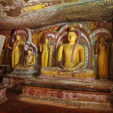 No templo da caverna de Dambulla Diversas estátuas antigas da Buda Fotografia de Stock Royalty Free