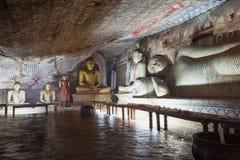 No templo da caverna de Dambulla Estátuas bonitas da Buda Fotografia de Stock Royalty Free