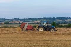 No tempo de colheita Foto de Stock Royalty Free