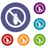 No termite sign icons set. In flat circle reb, blue and green color for web Royalty Free Stock Images